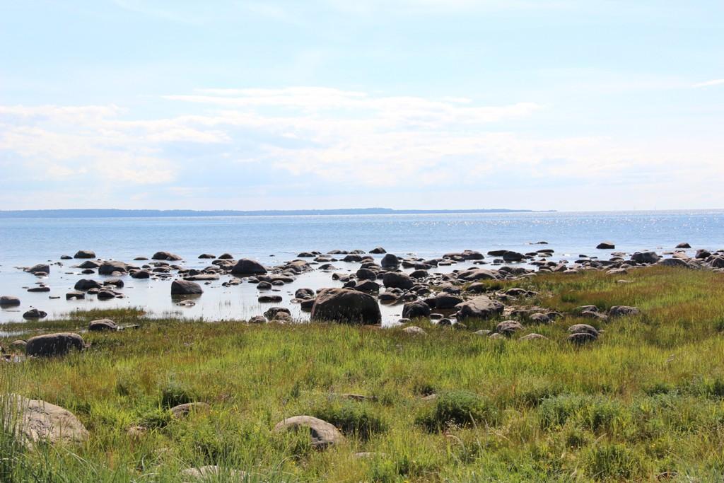 Naissaare kalmistu kõrval olev rand